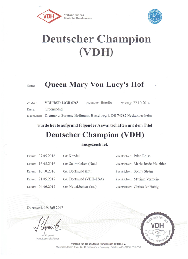 web VDH Champion